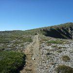 Main Range Track (267629)