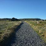 Walking along the Main Range Track (268346)