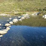 Snowy River (268661)