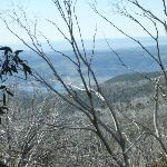 Distance view of Lake Jindabyne (269882)