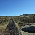 Passing the snow pole line on the Mt Kosciuszko path (271535)