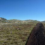 Along the Kosciuszko walk path (271679)