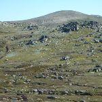 Mt Kosciuszko from from the Mt Kosciuszko Lookout (271748)