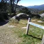 Folowing the Merritts Nature track sign near Top of Snowgums chairlift (272108)