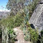 Walking beside the large rock on Merrits Nature Track (272306)