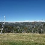 Looking over Thredbo Valley (272507)