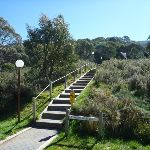 Heading up steps to Merrits Nature Track (273344)