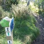 Golf Course loop track post (274292)