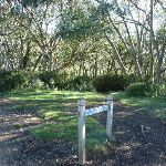 Following the Merritts Nature Track sign (275027)