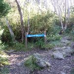 Int of Merritts nature track and Birralee bushcamp tracks (275117)