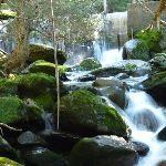 Water cascading below the weir (275405)