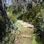 Erosion Control on Merrits Nature Track (276206)