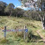 Bridle Trail Loop sign (278198)