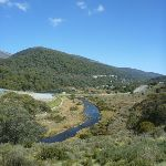 Looking along the Thredbo River (278219)