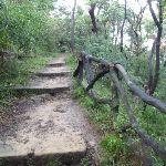 Steps near the Zoo (278903)