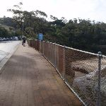 Walking below Taronga Zoo (278966)