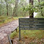 Track from Resolute Picnic Area (27989)
