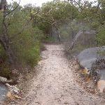 Headland Service Trail (28145)