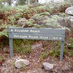 Sign post on Headland Track (28160)