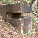 WWII gun emplacement (28334)