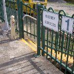 Great North Walk track off Cowan Station (28586)