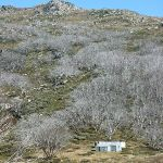 White Rivers Hut from Shlinck Trail (286452)