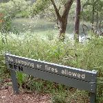 Sign near water on Jerusalem Bay Track (28703)