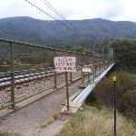 Rail bridge over Thredbo River (295439)