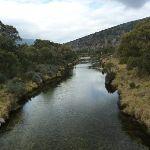 Thredbo River (295466)