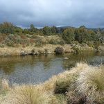 Looking south across the Thredbo River (295637)