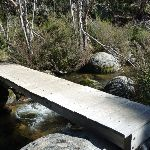 Bridge spanning Sawpit Creek on the Pallaibo and Sawpit Tracks (298574)