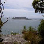 Barrenjoey Headland from above Mackerel Beach (29882)