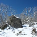 Granite Tor in the snow (300940)