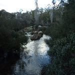 Thredbo River (302641)