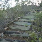 Steps on the Pallaibo Track (303013)