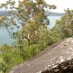 Views over the Hawkesbury River (30380)