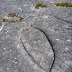Aboriginal Rock Engraving close to West Head Rd.   (304056)
