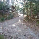 Elvina track near West Head Rd (304521)
