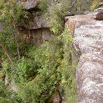 America Bay Waterfall cliff (30515)