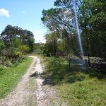 Trail close to Nerang Rd Terrey Hills (305708)