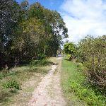 Perimeter Trail near Terrey Hills (305726)