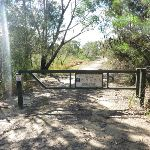 Locked gate at start of Smiths Creek Trial (306383)