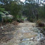 Perimeter Trail near Terrey Hills (306767)