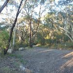 Cullamine Rd and Perimeter Trail near Terrey Hills (307898)
