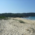 Congwong Beach near La Perouse (308636)