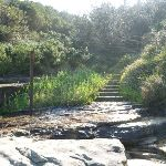 Steps leading out of Little Congwong Beach (308780)