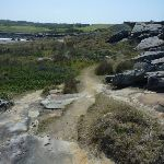 View and track on Cape Banks in Botany Bay National Park (310169)