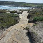 Cape Banks rocky track (310175)