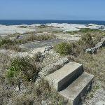 Concrete steps on Cape Banks in Botany Bay National Park (310178)