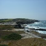 View from Cape Banks Botany Bay National Park (310190)